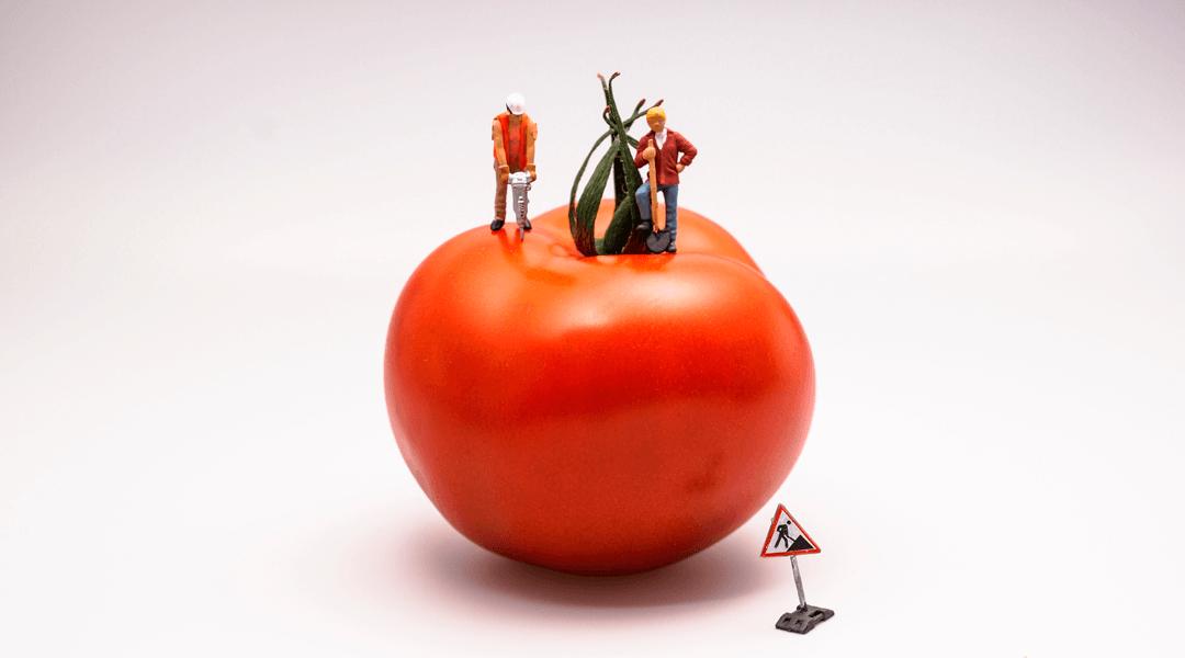 O pomodoro para manter o foco e aumentar a produtividade
