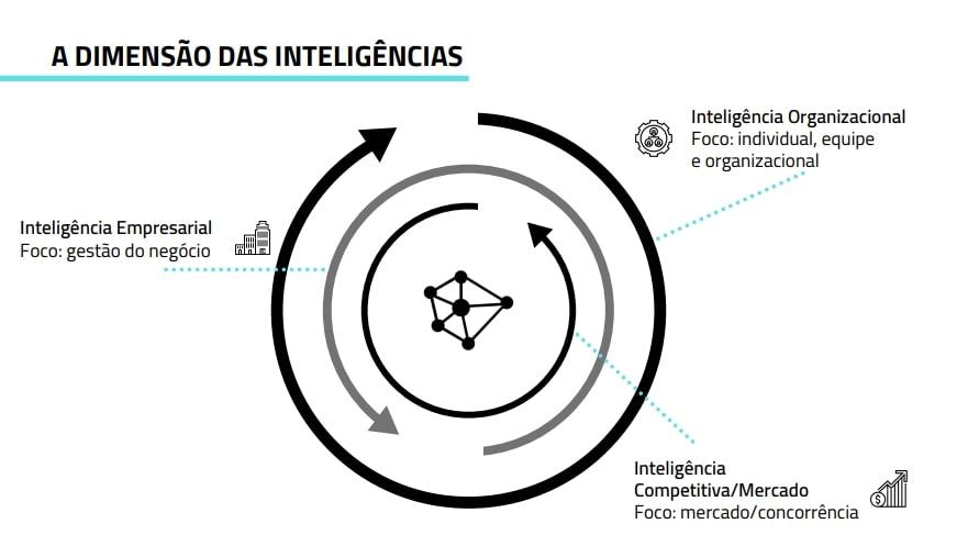 As Diferenças entre as Inteligências Dimensão das Inteligências