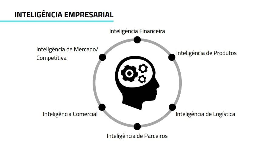 As Diferenças entre as Inteligências Inteligência Empresarial