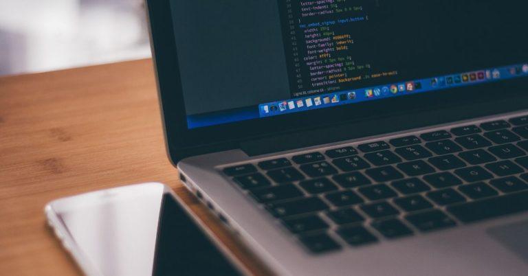 Guia sobre Desenvolvimento de Software para Gestores
